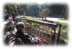 画像:夢プラン 動物園